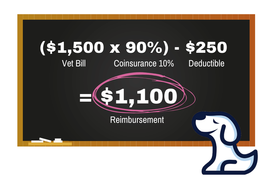 A chalkboard explaining how pet insurance works