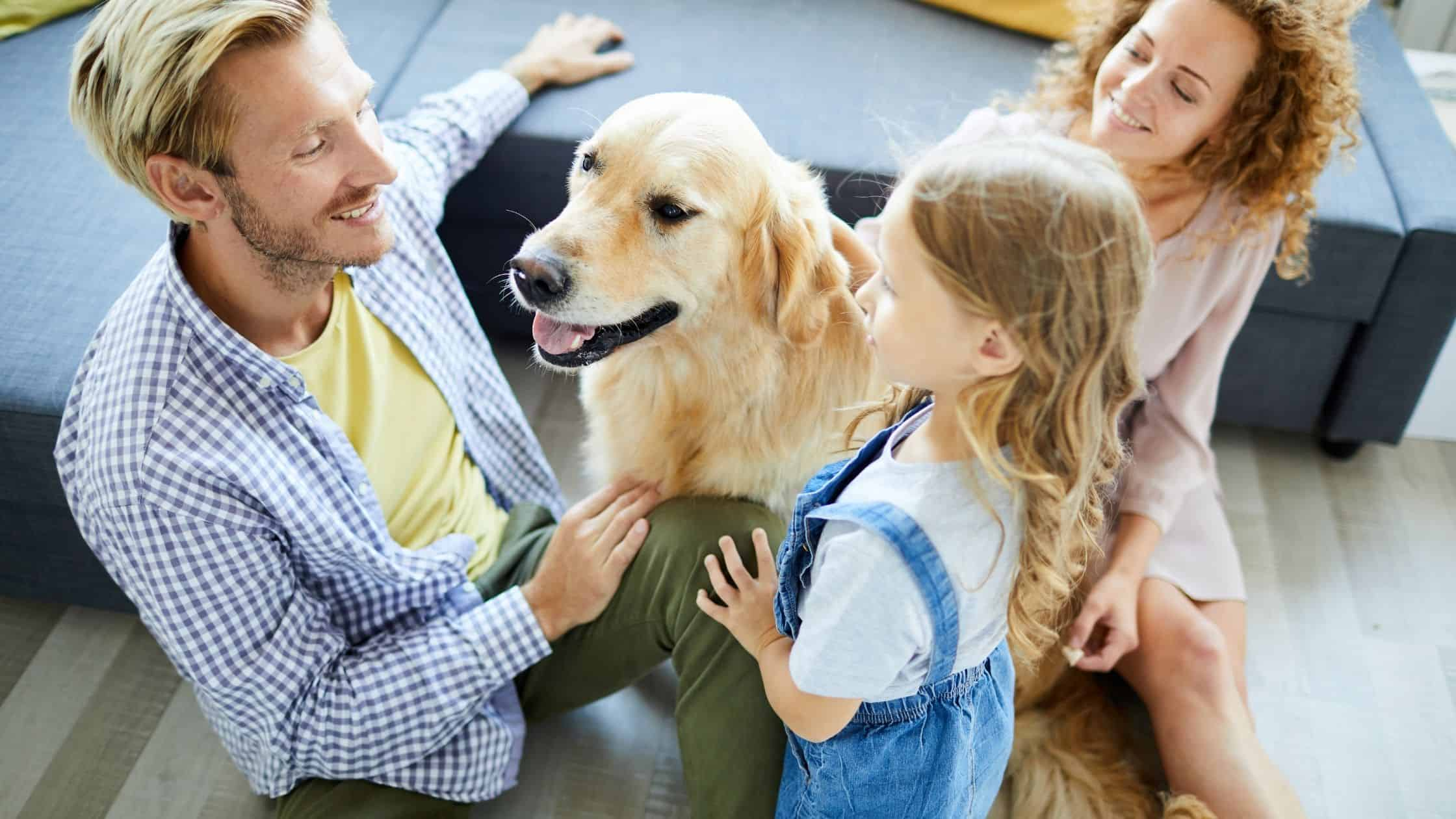 10 Best Dog Breeds for Families With Kids