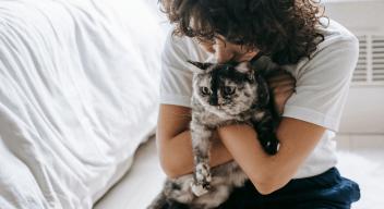 Pet Insurance fo Senior Cats